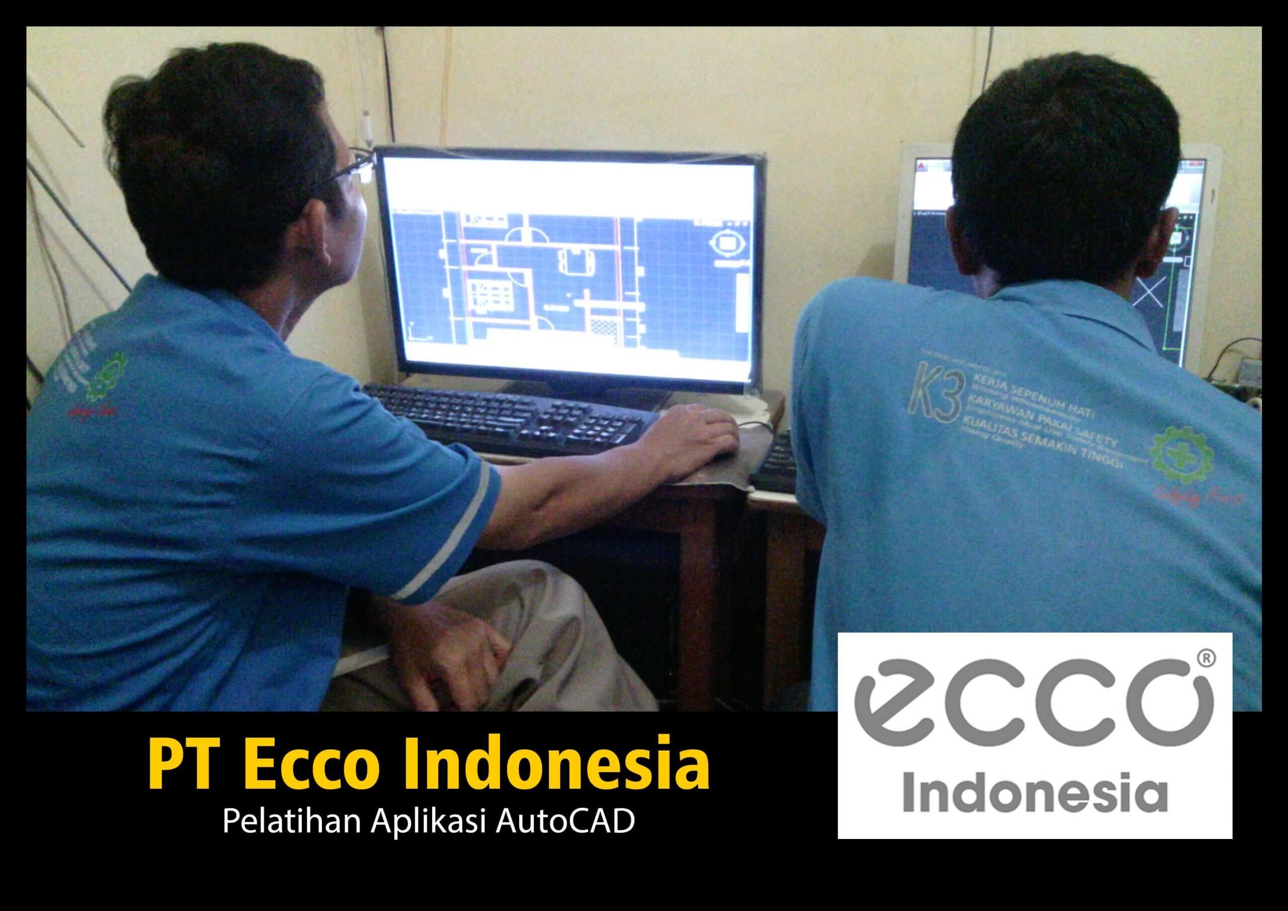 PIGORA ECCO INDONESIA